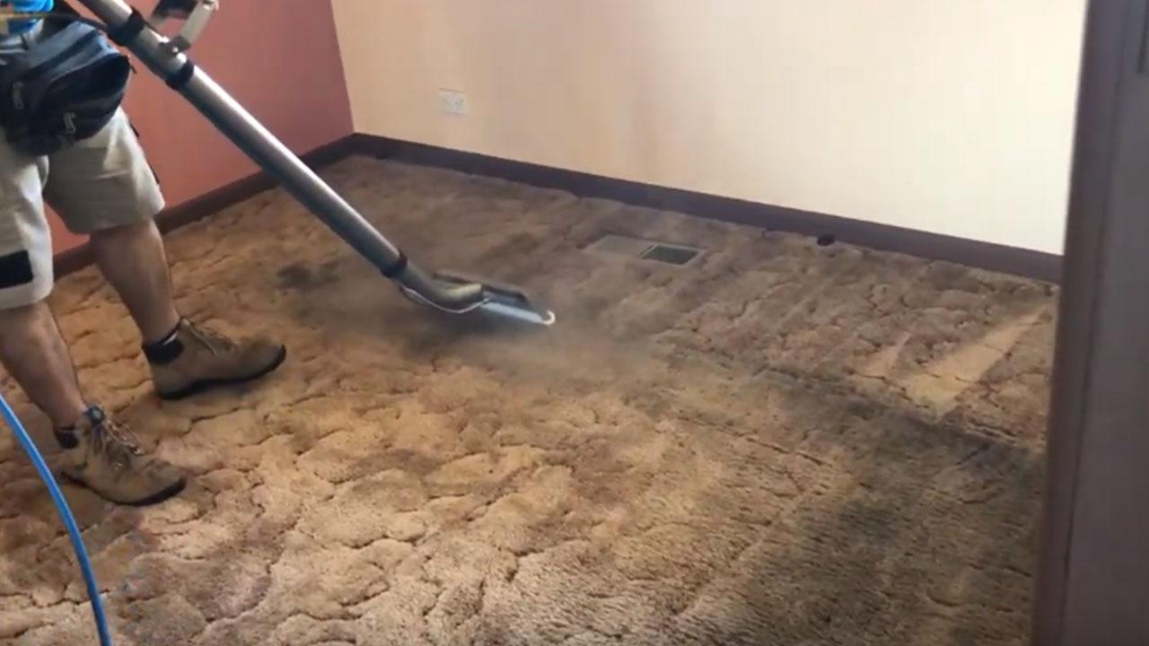 carpet cleaning services regina