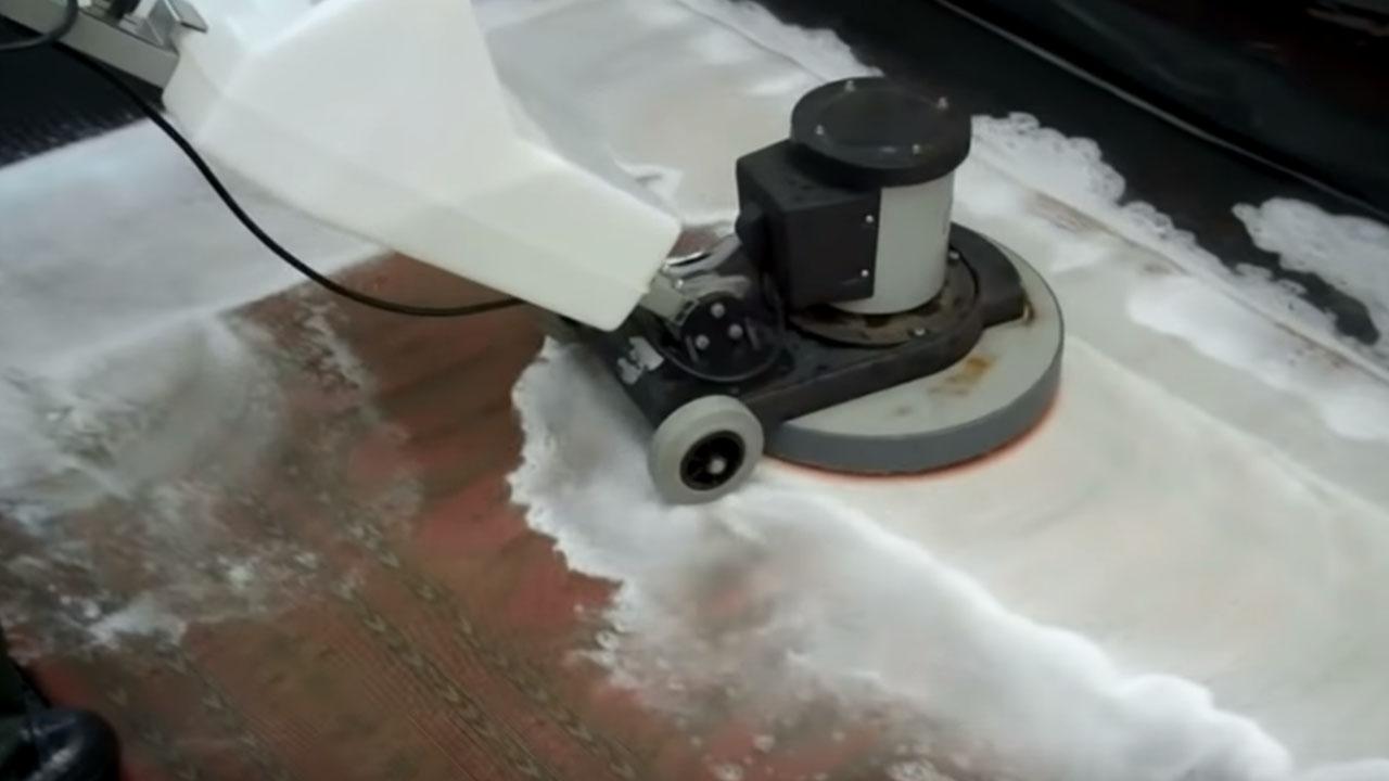 steam carpet cleaning services regina